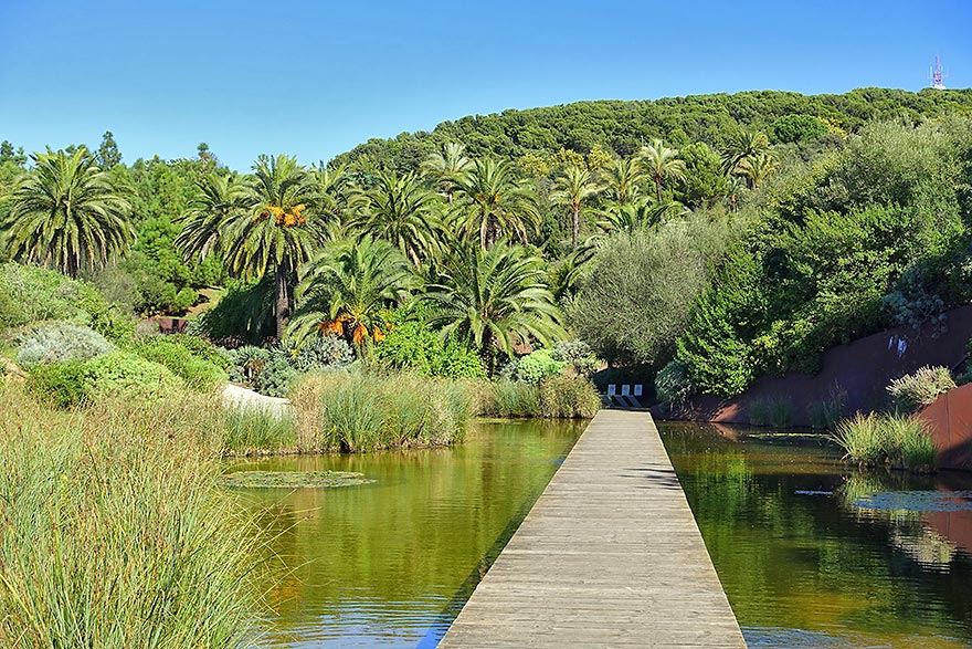 Botanical Gardens Barcelona